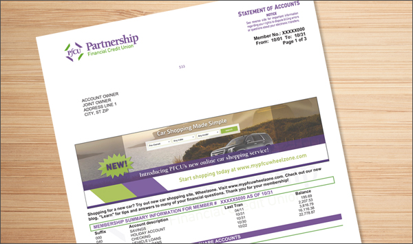 View Partnership FCU Statements Project